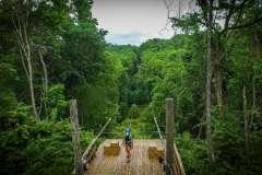 grand-vue-park-Ziplines-in-Woods