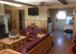 Traditional Cabin Living room and Kitchen
